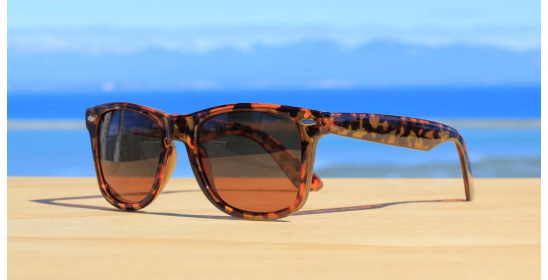 All Sunglasses, Fate