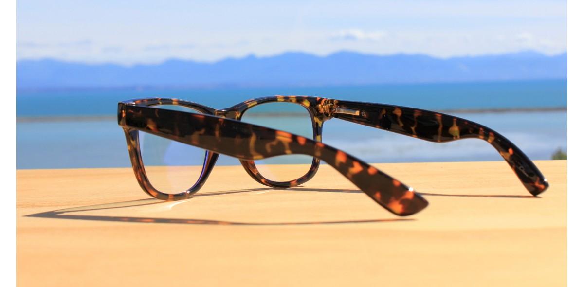 Blue Light Glasses NZ, Blue Light Glasses 2005-Tortoise