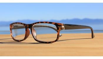 Reading Glasses, Reading Glasses R372 Tortoise