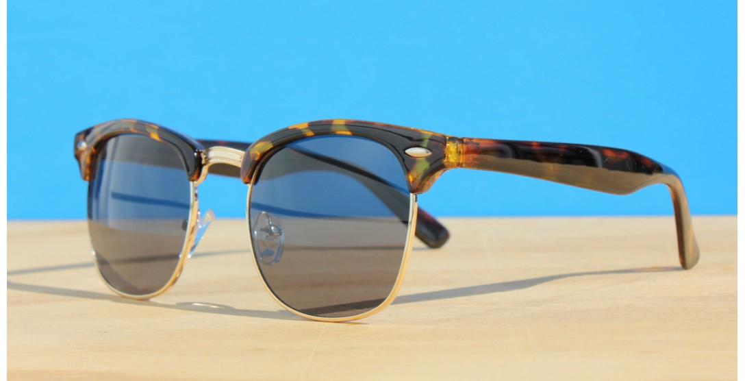 All Sunglasses, Morgan Tortoise SD
