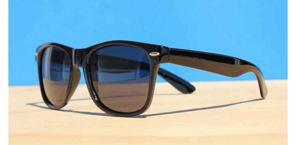 Classic Style Sunglasses, LA Polarized Black